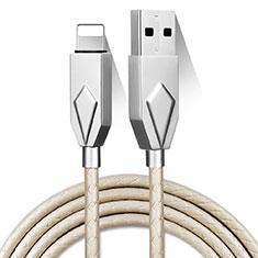 USB Ladekabel Kabel D13 für Apple iPhone 11 Silber