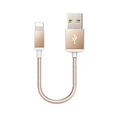 USB Ladekabel Kabel D18 für Apple iPad 10.2 (2020) Gold