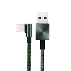 USB Ladekabel Kabel D19 für Apple iPhone 11 Pro Grün