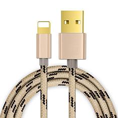 USB Ladekabel Kabel L01 für Apple iPad Pro 12.9 (2020) Gold