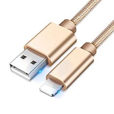 USB Ladekabel Kabel L08 für Apple iPhone 11 Pro Gold