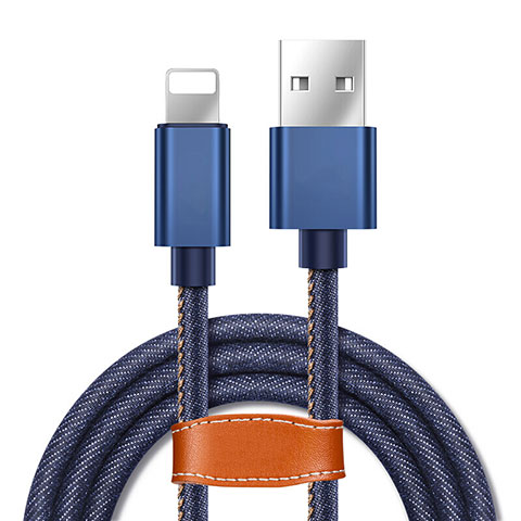 USB Ladekabel Kabel L04 für Apple iPhone 11 Pro Blau