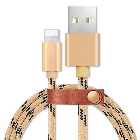 USB Ladekabel Kabel L05 für Apple iPhone 11 Gold