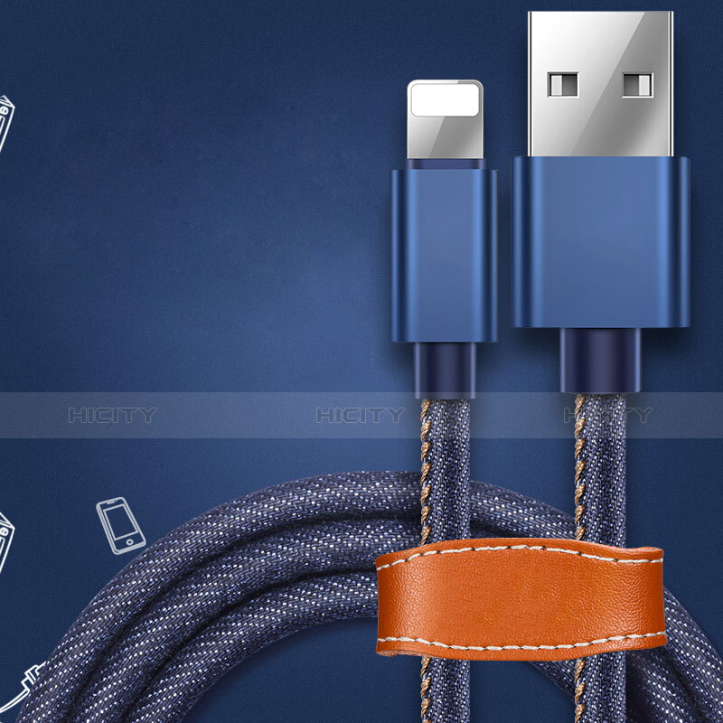 USB Ladekabel Kabel L04 für Apple iPhone 11 Blau groß
