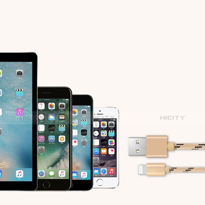 USB Ladekabel Kabel L05 für Apple iPhone 11 Gold groß