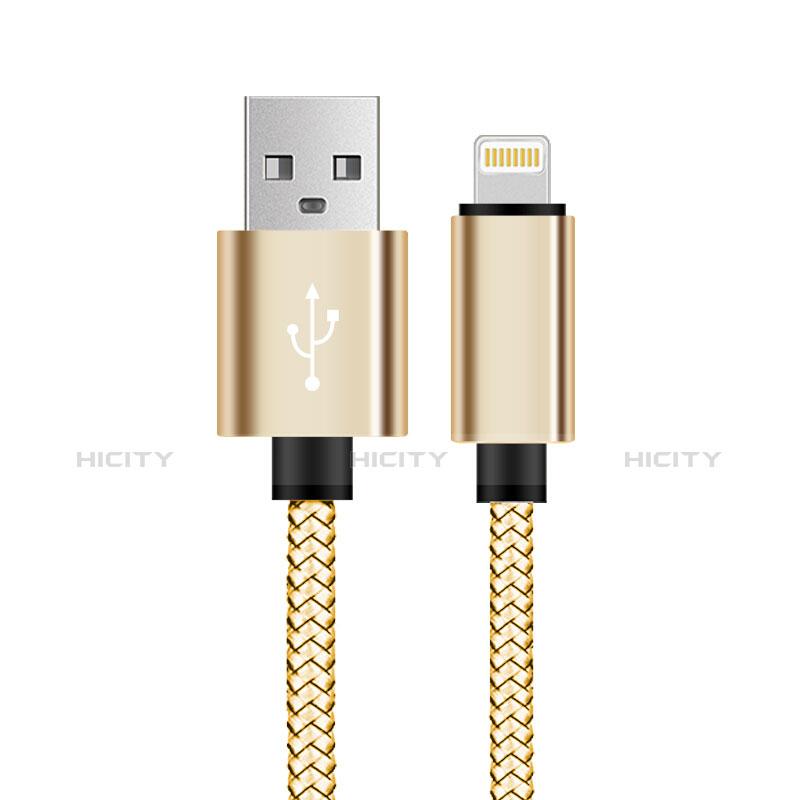 USB Ladekabel Kabel L07 für Apple iPhone 11 Gold groß
