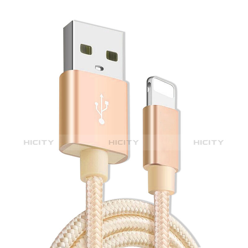 USB Ladekabel Kabel L08 für Apple iPhone 11 Pro Gold groß